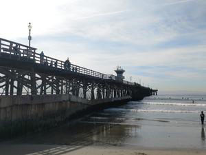 Seal_beach1