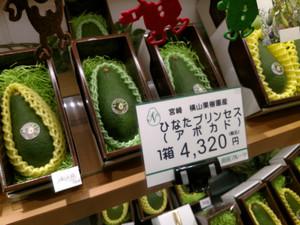 03_avocado