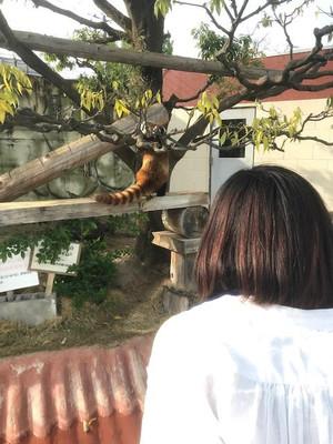 Kofu_pict_04242