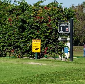 03_golf_course