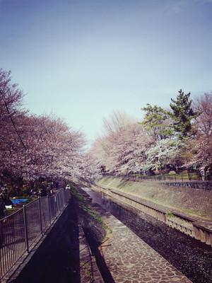 Huguchi_180201