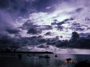 Higuchi_181108
