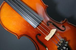 Violin2478783_19201